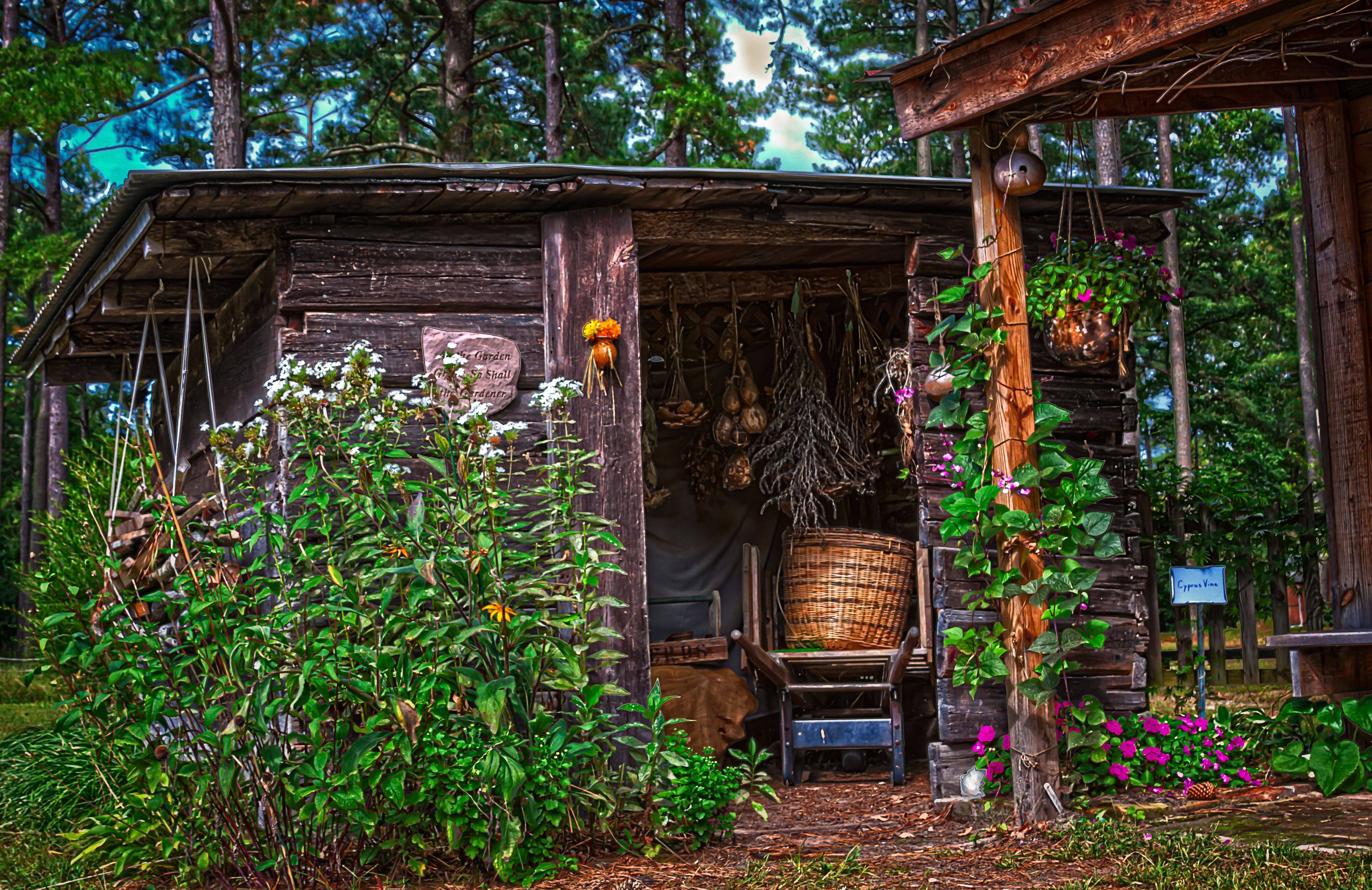 Garden Shed » Garden Shed